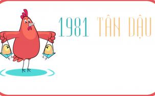Bật mí cách chọn sim phong thủy hợp tuổi 1981 chuẩn xác nhất