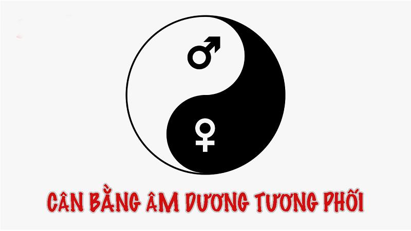 Chon Sim Phong Thuy 1993 Theo Thuyet Am Duong