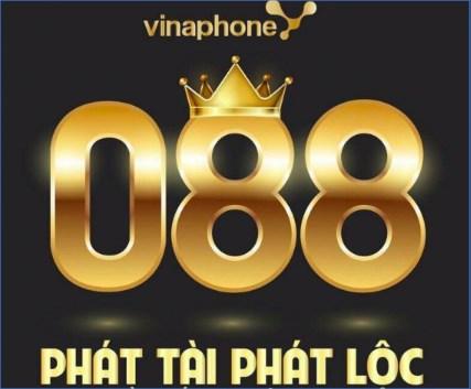 Dau So 088 Mang May Man Tai Loc