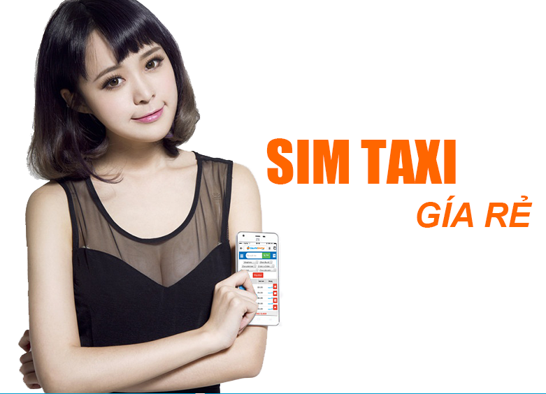 sim-taxi