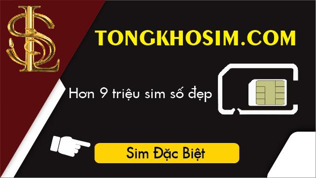 Tổng Kho Sim là địa chỉ cung cấp sim lộc phát 8668 chuyên nghiệp, uy tín